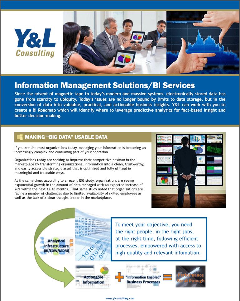 Management Solutions/BI Services